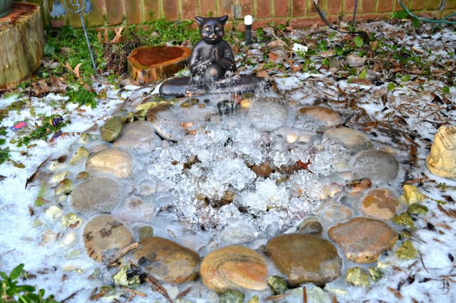 Kitty Fountain